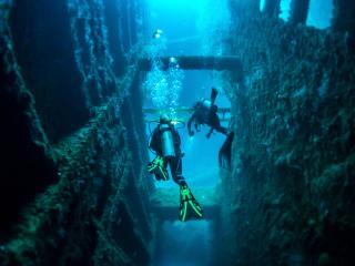 Dive into Vanuatu