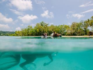 Vanuatu: Your Next Adventure Holiday
