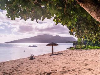 Pele Island Beach & Snorkelling Tour