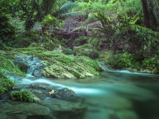 Mele Cascades : Waterfall Tour
